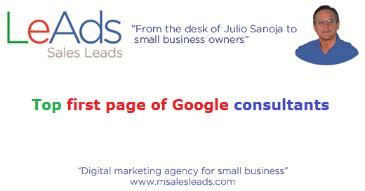 Top First Page of Google Consultants