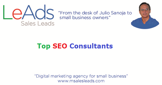 Top SEO Consultants