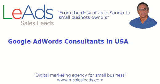 AdWords Consultants