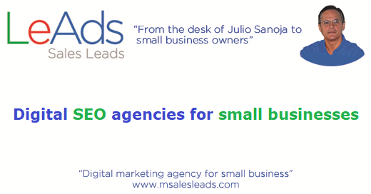 Digital SEO Agencies for Small Businesses