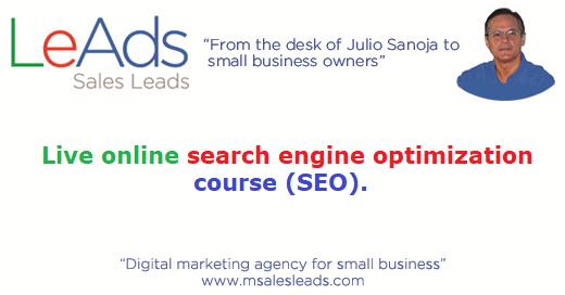 Live Online Search Engine Optimization Course