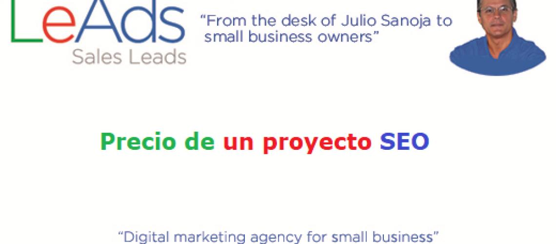 Precio Proyecto SEO